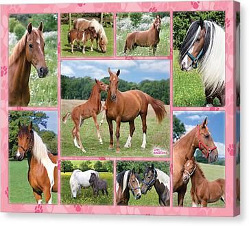 Horse Multipic Canvas Print