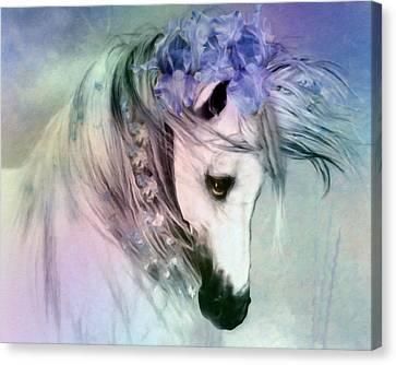Horse Of Love Canvas Print by Georgiana Romanovna