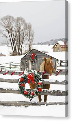 Horse On Soward Ranch Decorated For The Canvas Print by Michael DeYoung