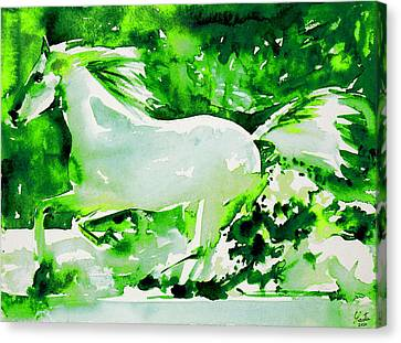 Horse Painting.4 Canvas Print by Fabrizio Cassetta
