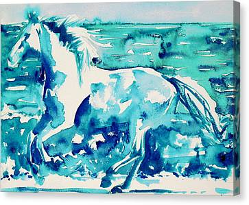 Horse Painting.44 Canvas Print by Fabrizio Cassetta