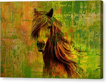 Horse Paintings 001 Canvas Print by Catf