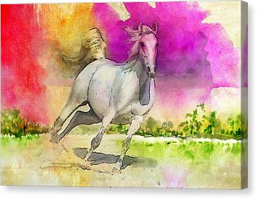 Horse Paintings 007 Canvas Print by Catf