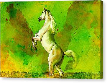 Horse Paintings 010 Canvas Print by Catf