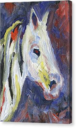Horse Portrait 105 Canvas Print