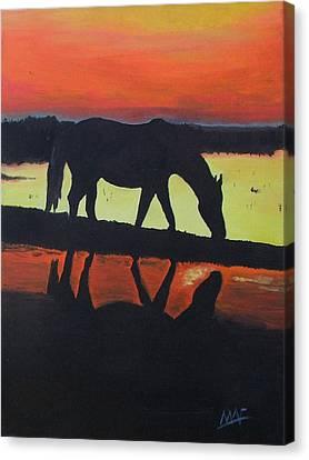 Horse Shadows Canvas Print by Mark Fluharty