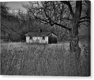 Horse Shed Canvas Print
