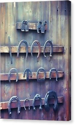 Horse Shoes Canvas Print by JAMART Photography