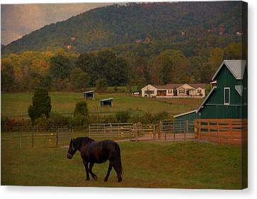 Horseback Riding In Gatlinburg Canvas Print by Dan Sproul
