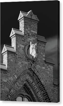 Horsehead   8256 Canvas Print by Guy Whiteley