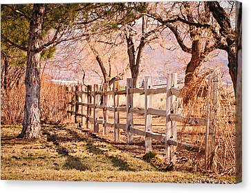Canvas Print featuring the photograph Horsemans Park Reno Nevada by Janis Knight