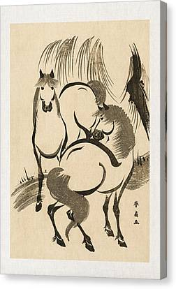 Horses Canvas Print by Aged Pixel