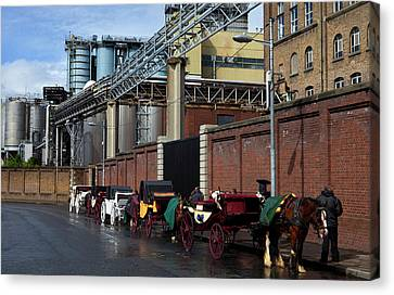 Horses And Carriages Canvas Print by Panoramic Images