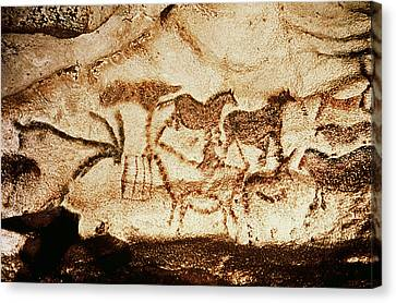 Horses And Deer From The Caves At Altamira, 15000 Bc Cave Painting Canvas Print by Prehistoric