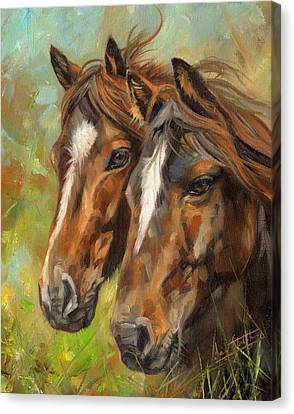 Horses Canvas Print by David Stribbling