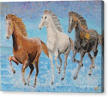 Canvas Print featuring the painting Horses From Troy by Vicky Tarcau