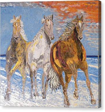 Horses On The Beach Canvas Print by Vicky Tarcau