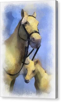 Horses Photo Art Canvas Print by Thomas Woolworth