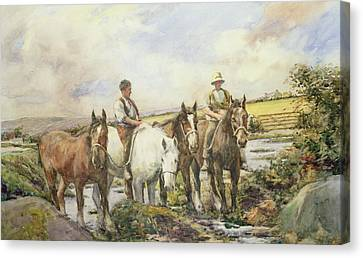 Stone Pony Canvas Print - Horses Watering by Henry Meynell Rheam