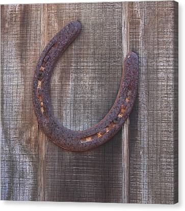 Horseshoe Canvas Print by Art Block Collections