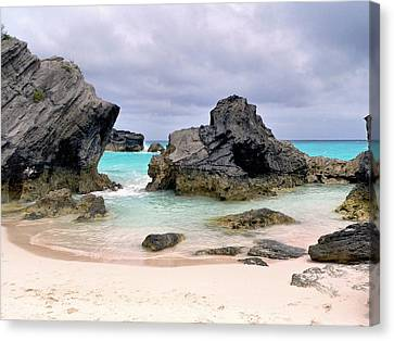 Horseshoe Beach In Bermuda Canvas Print by Janice Drew