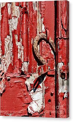 Horseshoe Door Handle Canvas Print by Paul Ward