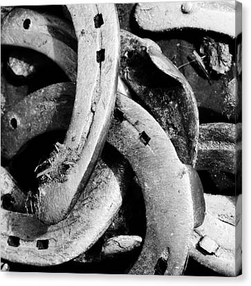 Horseshoes Black And White Canvas Print by Matthias Hauser