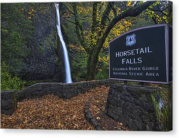Beauty Mark Canvas Print - Horsetail Falls With Sign by Mark Kiver