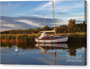 Horsey Mere In Evening Light Canvas Print by Louise Heusinkveld