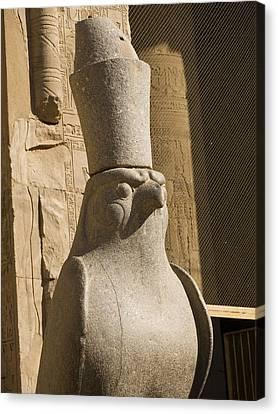 horus the Eagle Headed God Canvas Print by Brenda Kean