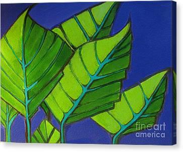 Hosta Blue Tip One Canvas Print