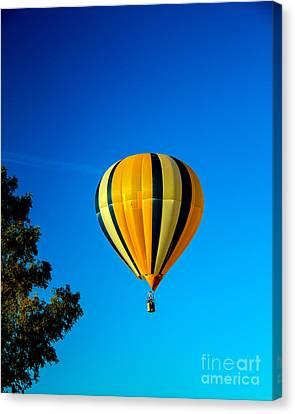 Hot Air Balloon Canvas Print by Robert Bales