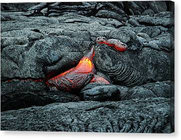 Hot Lava Canvas Print by Jen Morrison