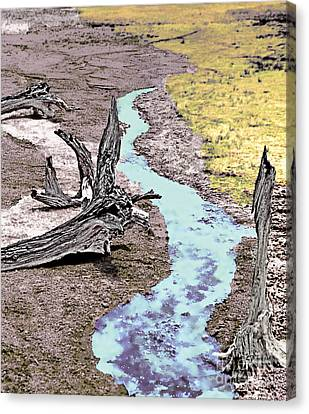 Hot Springs Driftwood - 3 Canvas Print by Linda  Parker