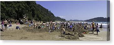 Hot Water Beach Canvas Print by Tim Mulholland