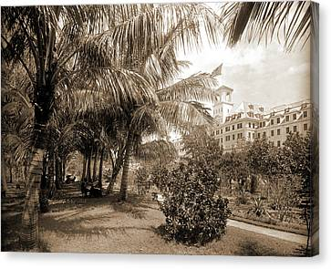 Royal Poinciana Canvas Print - Hotel Royal Poinciana, Lake Worth, Jackson, William Henry by Litz Collection