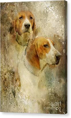 Hounds Canvas Print by Lyndsey Warren