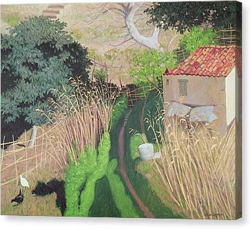 House And Reeds Canvas Print