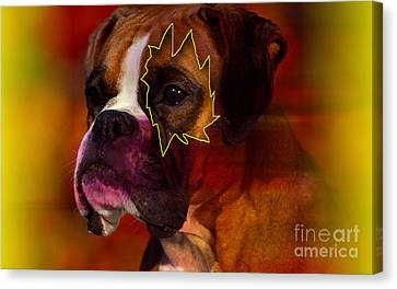 House Broken Boxer Painting Canvas Print by Marvin Blaine