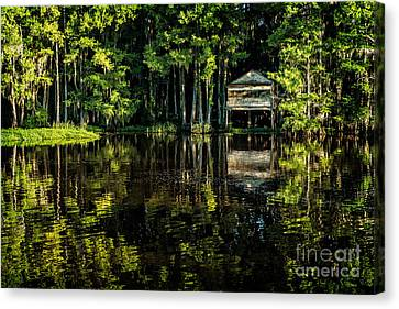 House In The Swamp Canvas Print
