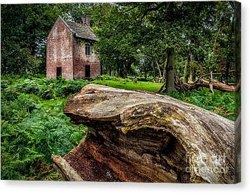 House In The Woods Canvas Print by Adrian Evans