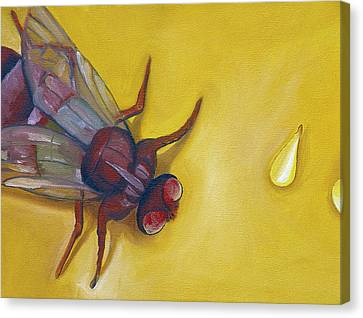 Housefly With Sesame Seeds Canvas Print by Laura Dozor