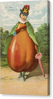 How Do I A Pear Canvas Print by Aged Pixel