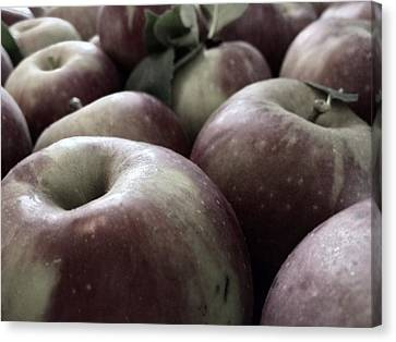 Canvas Print featuring the photograph How Do You Like Them Apples by Photographic Arts And Design Studio