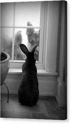 How Much Is The Doggie In The Window? Canvas Print