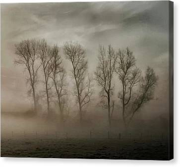 How Nature Hides The Wrinkles Of Her Antiquity Under Morning Fog And Dew Canvas Print