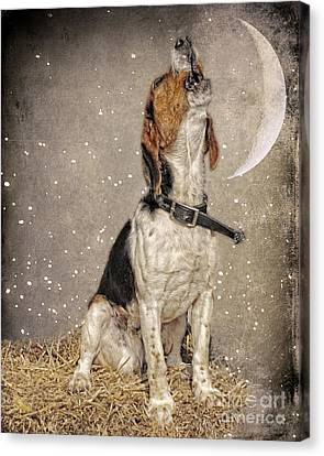 Howl At The Moon Canvas Print by Jak of Arts Photography