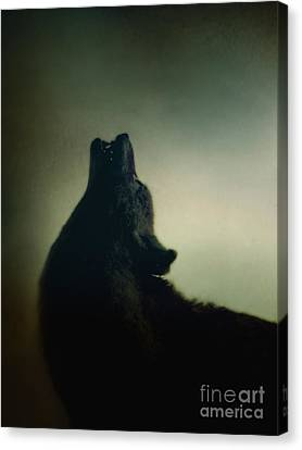 Howling Canvas Print