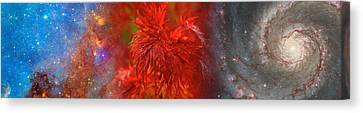 Hubble Galaxy With Red Maple Foliage Canvas Print by Panoramic Images