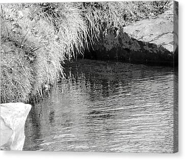 Huck Finn And The Water Cave Canvas Print by Lenore Senior
